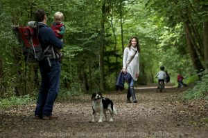Forest of Dean & Wye Valley, families